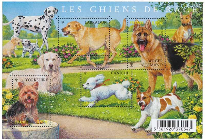 Bloc : 2011 Les chiens de race
