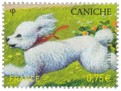 Timbre : 2011 CANICHE