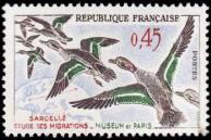 Sarcelles - Étude des migrations