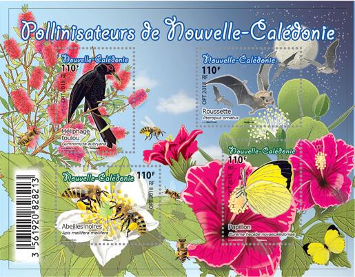 Pollinisateurs de Nouvelle-Calédonie